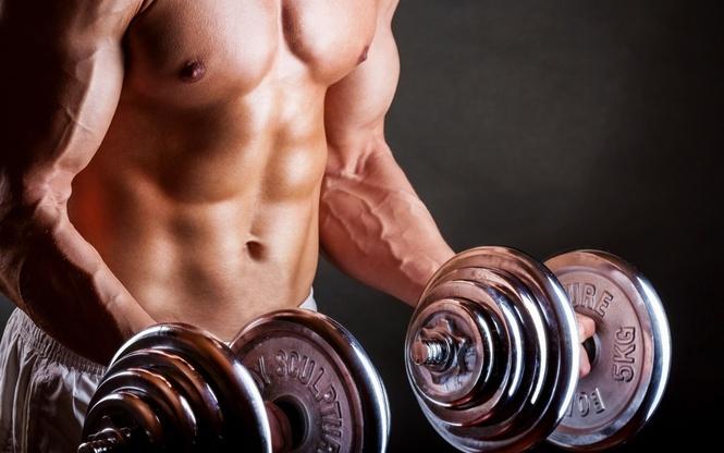 Картинки по запросу гормоны для увеличения мышечной массы